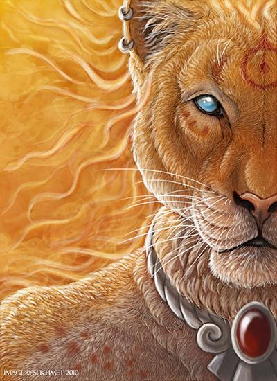 lioness-sm